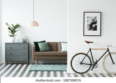 Black bike under poster in living room interior with brown settee next to a grey cabinet with plant