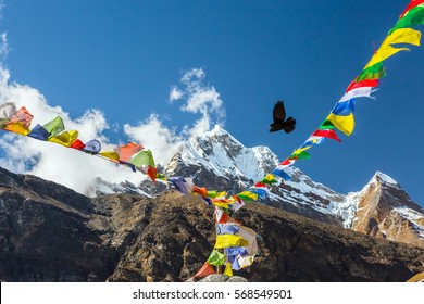 Black Bird flying in windy Sky in Himalaya Mountains traditional Nepalese Prayer Flags hanging on foreground high altitude Summit on Background