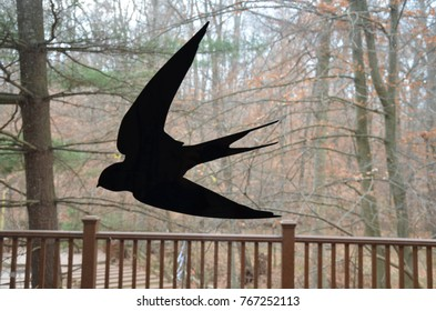 black bird silhouette or shadow on window with trees in the background