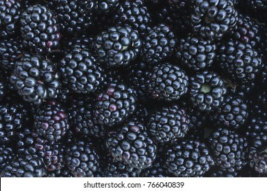 Black blackberry texture or background cg render