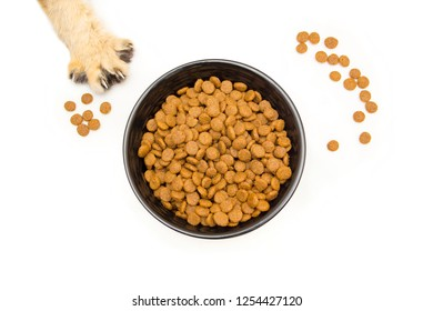 Black bowl with dry cat food stands on a white background top view, next scattered pieces of food and a cat's paw with claws stretching for a bowl of food.