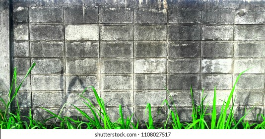 Black brick wall background with green grass on front.