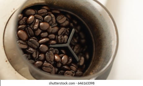 The black brown Roasted coffee beans in the Coffee grinder, input bowl is plastic circle