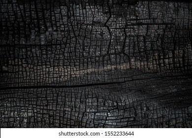 Black burned wooden board texture. Burnt wooden Board. Burned scratched hardwood surface. Halloween backdrop. Smoking wood plank halloween background.