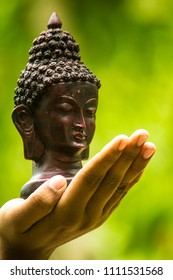 Black bust sculpture of Lord Buddha on palm