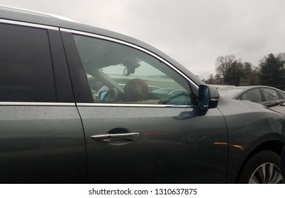 black car with brown dog inside and window up