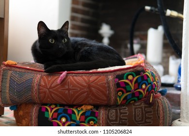 A black car sits perched on meditation pillows