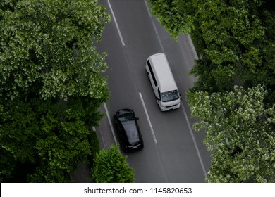 Black car and white van driving along the shady road way with branches of big tree.