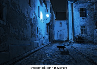 black cat crosses the deserted street at night