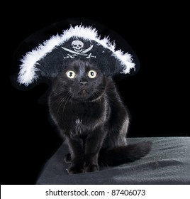 Black Cat in the Hat pirate on a dark background