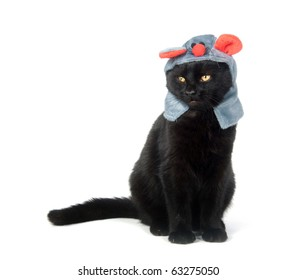 Black cat with a mouse hat on white background