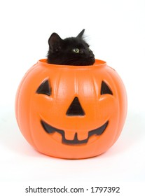 A black cat peeks out of the top of a plastic pumpkin