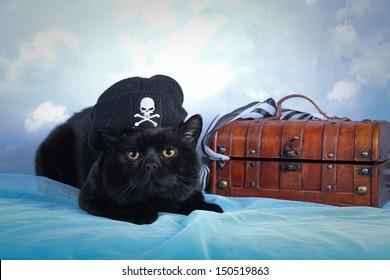 black cat - a pirate against the sky