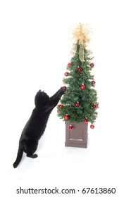 Black cat playing with Christmas tree and decorations on white background.
