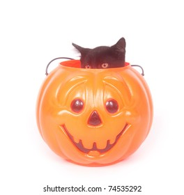 Black cat sitting inside of a plastic Halloween jack-o-lantern on white background