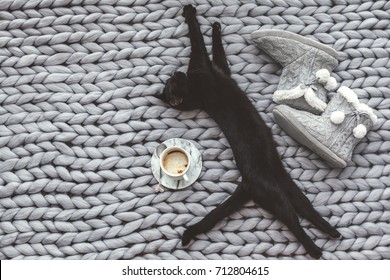 Black cat sleeping on knitted woolen chunky blanket. Funny kitty and home slippers on the warm soft bed. Scandinavian style, hygge, autumn morning cozy concept.