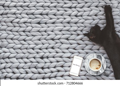 Black cat sleeping on knitted woolen chunky blanket. Funny kitty in the warm soft bed. Scandinavian style, hygge. Autumn morning cozy concept.