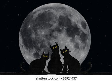 black cats with full moon background