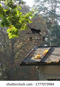 black cat-shaped weathervane on house in autumn park
