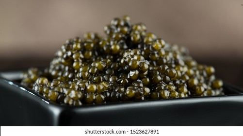 Black Caviar in a bowl. High quality real natural sturgeon black caviar close-up. Delicatessen. Texture of expensive luxury caviar square dish on black