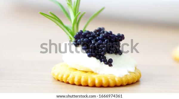 Black caviar on cream cheese and cracker close up