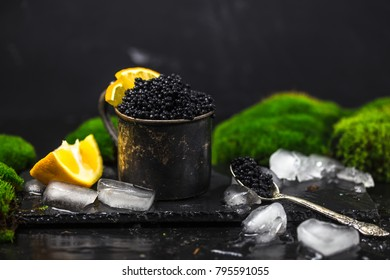 Black caviar in vintage silver tin can with moss