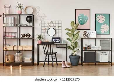 Black chair at desk with laptop in girl's home office interior with leaves posters and ficus