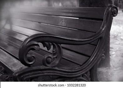 Black chair in the garden.