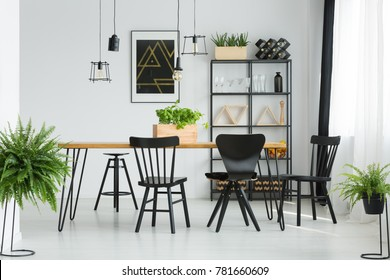 Black chairs at dining table in bright dining room with ferns and dark poster on white wall