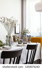 Black chairs at table with plants and tableware in bright dining room interior with window. Real photo