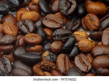 black coffee seed