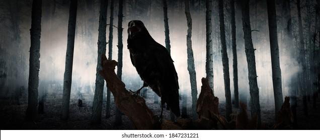 Black crow croaking in creepy misty forest, banner design. Fantasy world