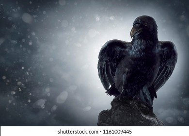 Black crow sitting on a gravestone