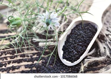 Black cumin (nigella sativa or kalonji) seeds in spoon on cumin plant background, selective focus