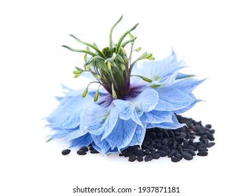 Black cumin seeds with nigella sativa flower in closeup on white background