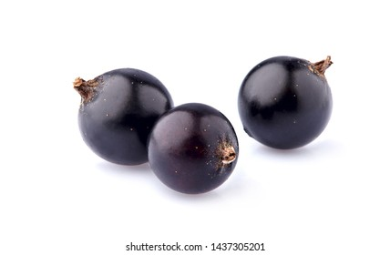 Black currant berries on White Background isolated