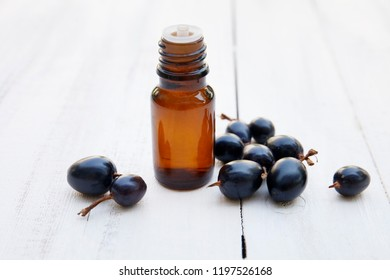 black currant extract (oil, tincture, remedy, infusion) bottle with fresh black currant berry on white wooden background