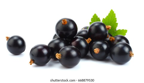 black currant with green leaf isolated on white background