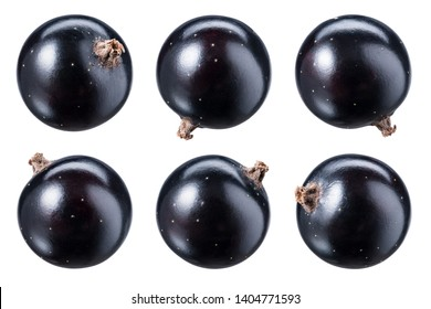 Black currant isolate. Top view. Currant black berries isolated on white background with clipping path. Black currant set with full depth of field.