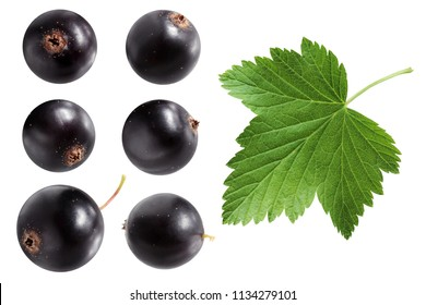 black currant isolated on white background. berries and leaf.