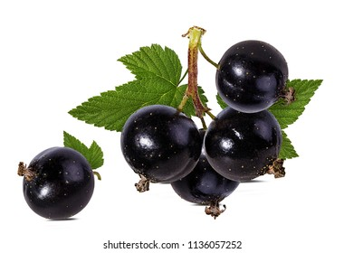 black currant isolated on white