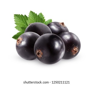Black currant isolated on white background.  bunch of ripe berries with leaves.
