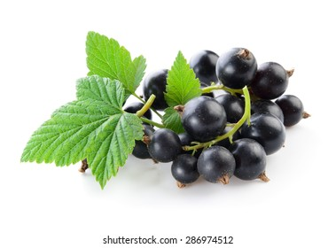 Black currant isolated on white.