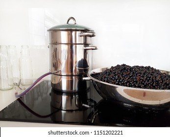 Black currant juice making by steam juicer pot in the kitchen