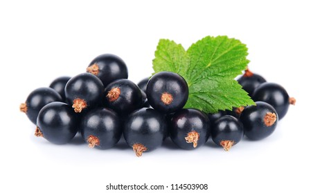Black currant with leafs on white