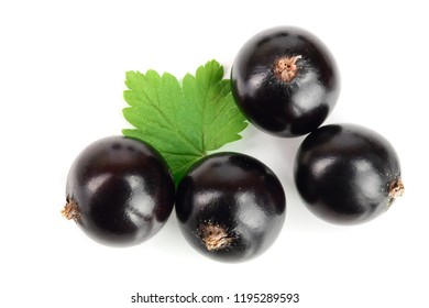 black currant with leaves isolated on white background. Top view. Flat lay pattern