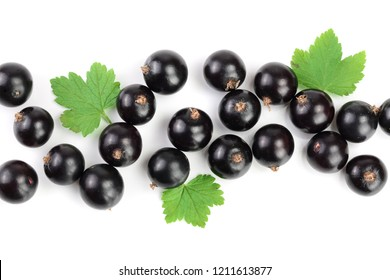 black currant with leaves isolated on white background with copy space for your text. Top view. Flat lay pattern