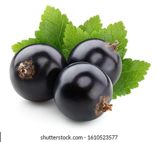 Black currant with leaves isolated on white background. Isolated berries clipping path.