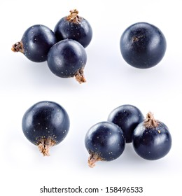 Black currant on white. Collection