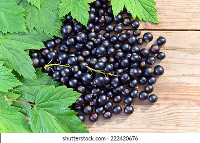 black currant, ripe berries and green leaves on  wooden table